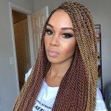 dcbe8d45829b2736735ecad4388bb695--nice-braids-beautiful-braids